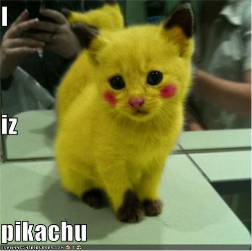 pikachu_kitteh_by_msidiotgirlofjapan-d4dcy25.png